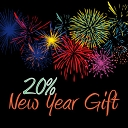 20% NEW YEAR GIFT