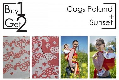 Buy1Get2  Cogs Poland 4.6 + Sunset 4.6